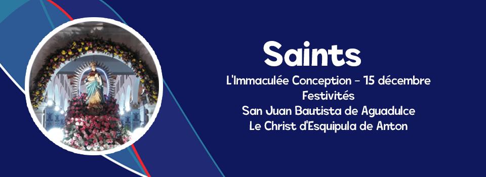 SANTOPANANOME fr
