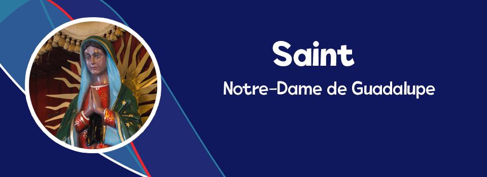 SANTOVICA fr