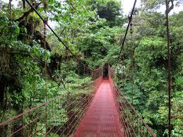 Puentes_Colgantes_Monteverde