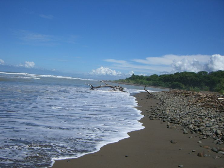 full-estuary-mouth-playa-domincal